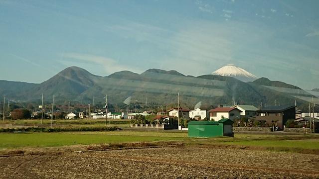 画像1: 【山旅会・登山ガイドこだわりツアー】添乗員からの便り矢倉岳ツアーにいってまいりました!