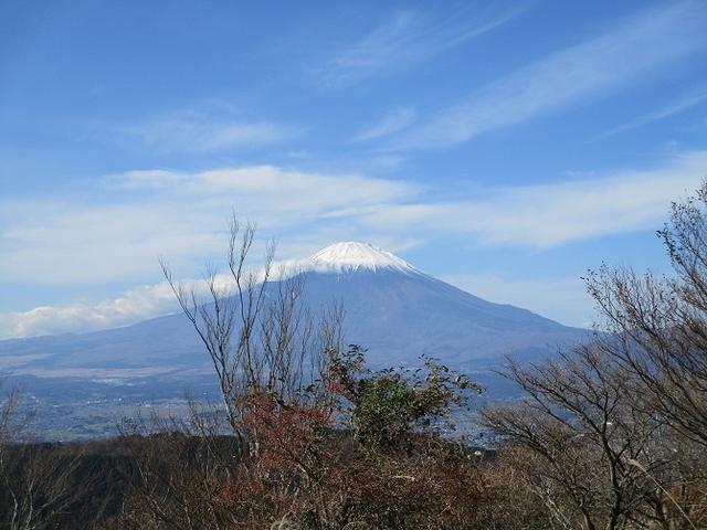 画像5: 【山旅会・登山ガイドこだわりツアー】添乗員からの便り矢倉岳ツアーにいってまいりました!