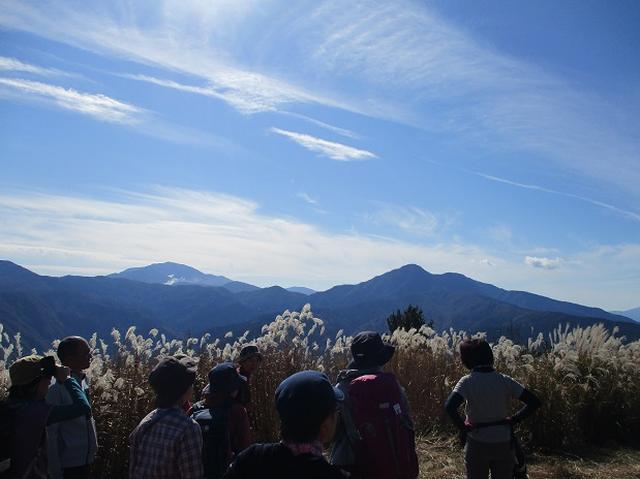 画像7: 【山旅会・登山ガイドこだわりツアー】添乗員からの便り矢倉岳ツアーにいってまいりました!