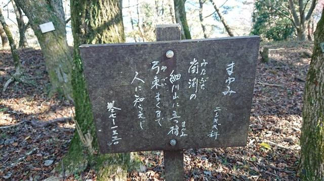 画像10: 【山旅会・登山ガイドこだわりツアー】添乗員からの便り矢倉岳ツアーにいってまいりました!