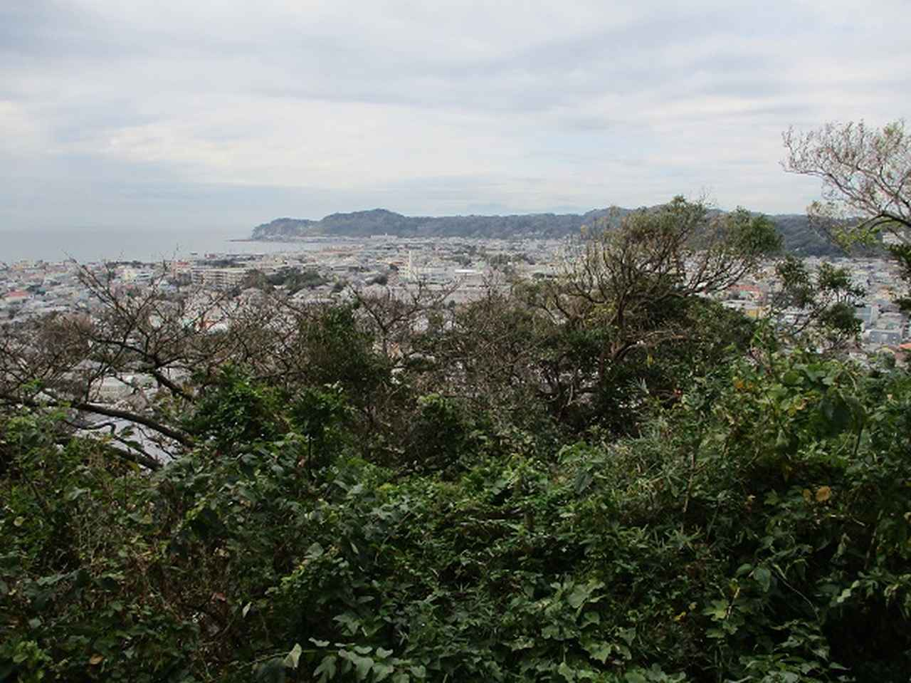 画像10: 【山旅会・登山ガイドこだわりツアー】岡田ガイドからの便り・散在ヶ池から祇園山ツアーにいってまいりました!