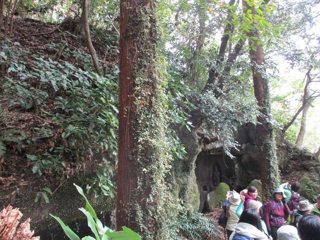 画像4: 【山旅会・登山ガイドこだわりツアー】岡田ガイドからの便り・散在ヶ池から祇園山ツアーにいってまいりました!