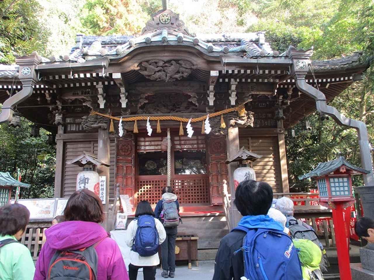 画像12: 【山旅会・登山ガイドこだわりツアー】岡田ガイドからの便り・散在ヶ池から祇園山ツアーにいってまいりました!