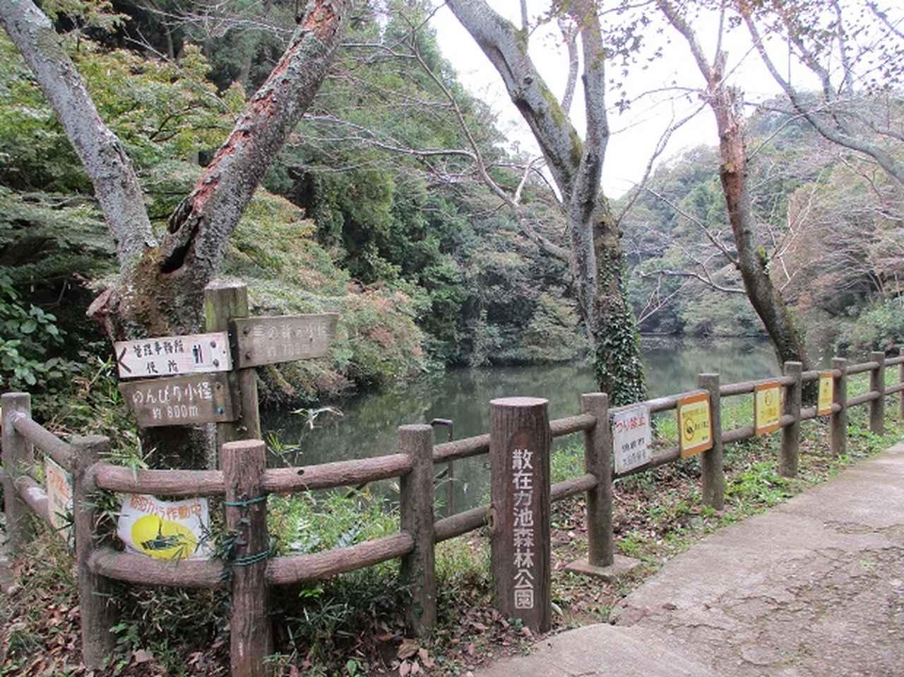 画像1: 【山旅会・登山ガイドこだわりツアー】岡田ガイドからの便り・散在ヶ池から祇園山ツアーにいってまいりました!