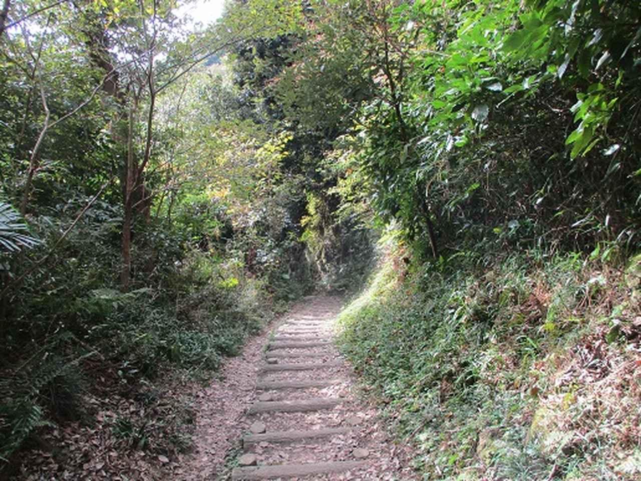 画像5: 【山旅会・登山ガイドこだわりツアー】岡田ガイドからの便り・散在ヶ池から祇園山ツアーにいってまいりました!