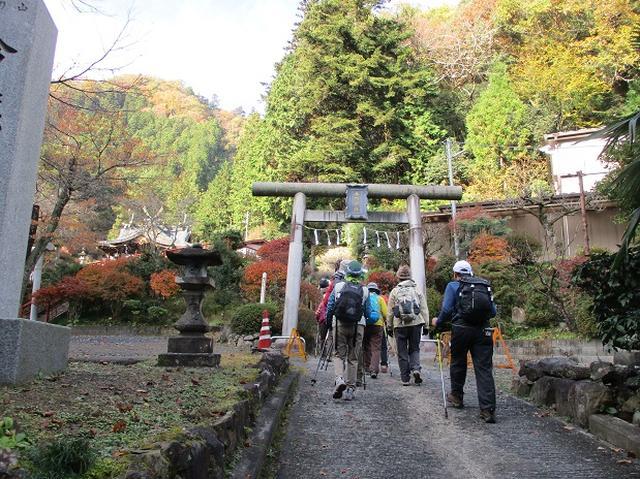 画像1: 【山旅会・登山ガイドこだわりツアー】岡田ガイドからの便り・刈寄山と今熊山ツアーにいってまいりました!