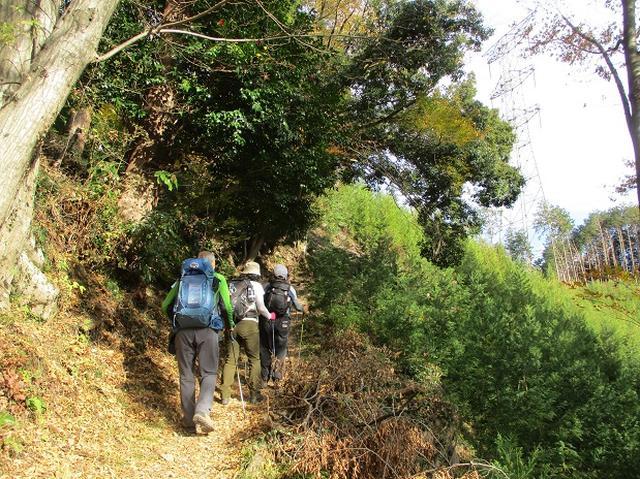 画像3: 【山旅会・登山ガイドこだわりツアー】岡田ガイドからの便り・刈寄山と今熊山ツアーにいってまいりました!