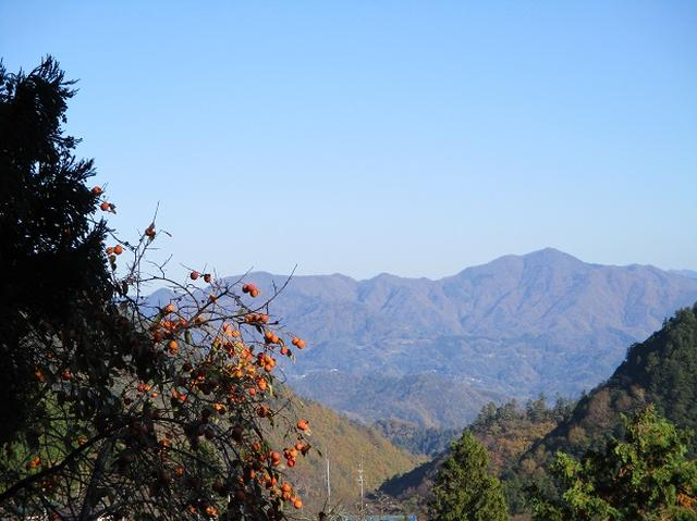 画像12: 11月21日に岡田ガイドのコースで、山梨県富士川町にたたずむ 大柳川渓谷 へ行って来ました♪