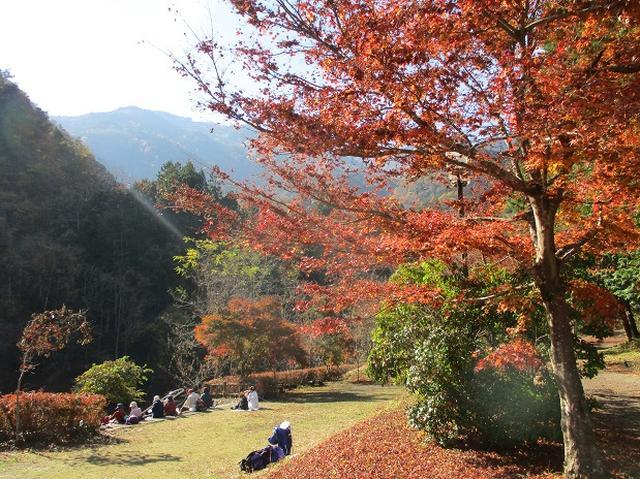 画像6: 11月21日に岡田ガイドのコースで、山梨県富士川町にたたずむ 大柳川渓谷 へ行って来ました♪