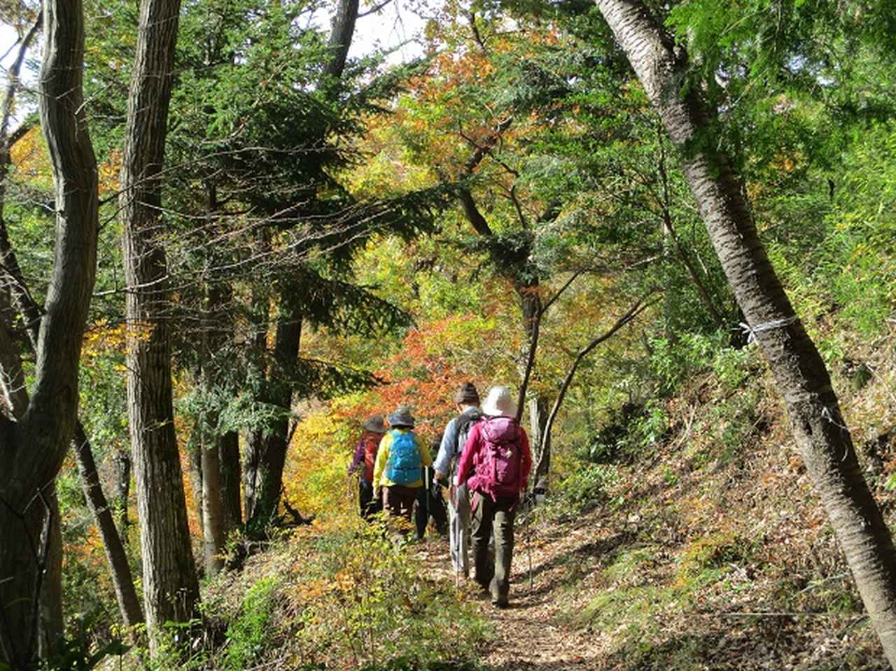 画像7: 【山旅会・登山ガイドこだわりツアー】岡田ガイドからの便り・刈寄山と今熊山ツアーにいってまいりました!