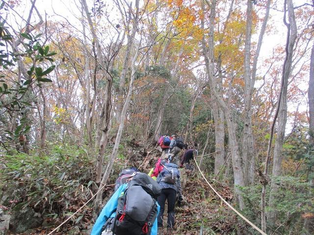 画像3: 11月22日に岡田ガイドの現地集合コースで、 戸倉三山の1つ、 臼杵山 へ行って来ました♪