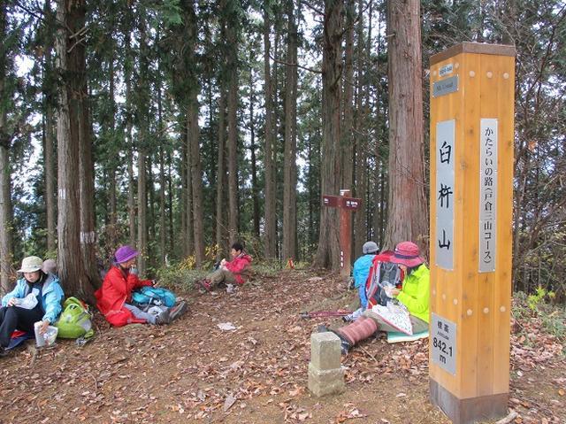 画像6: 11月22日に岡田ガイドの現地集合コースで、 戸倉三山の1つ、 臼杵山 へ行って来ました♪