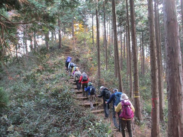 画像8: 【山旅会・登山ガイドこだわりツアー】岡田ガイドからの便り・刈寄山と今熊山ツアーにいってまいりました!