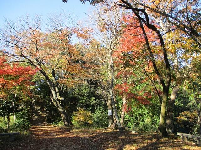 画像6: 【山旅会・登山ガイドこだわりツアー】岡田ガイドからの便り・刈寄山と今熊山ツアーにいってまいりました!