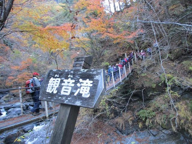 画像10: 11月21日に岡田ガイドのコースで、山梨県富士川町にたたずむ 大柳川渓谷 へ行って来ました♪