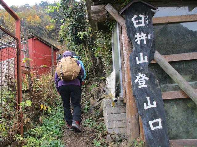 画像1: 11月22日に岡田ガイドの現地集合コースで、 戸倉三山の1つ、 臼杵山 へ行って来ました♪