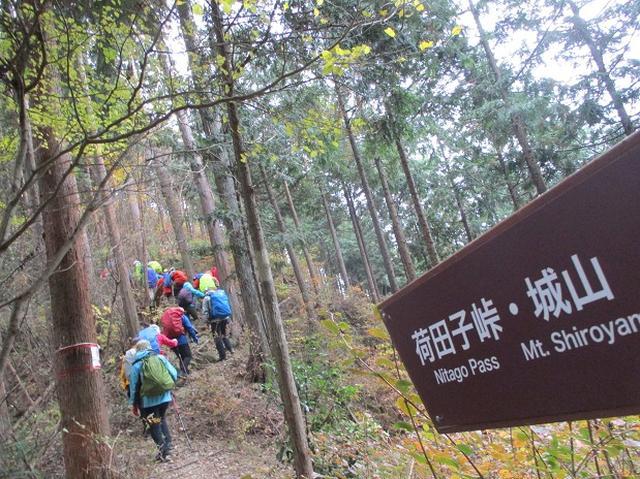 画像8: 11月22日に岡田ガイドの現地集合コースで、 戸倉三山の1つ、 臼杵山 へ行って来ました♪