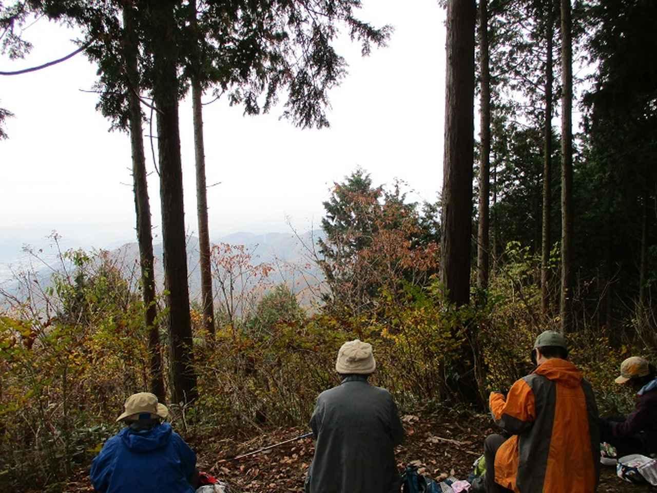 画像7: 11月22日に岡田ガイドの現地集合コースで、 戸倉三山の1つ、 臼杵山 へ行って来ました♪