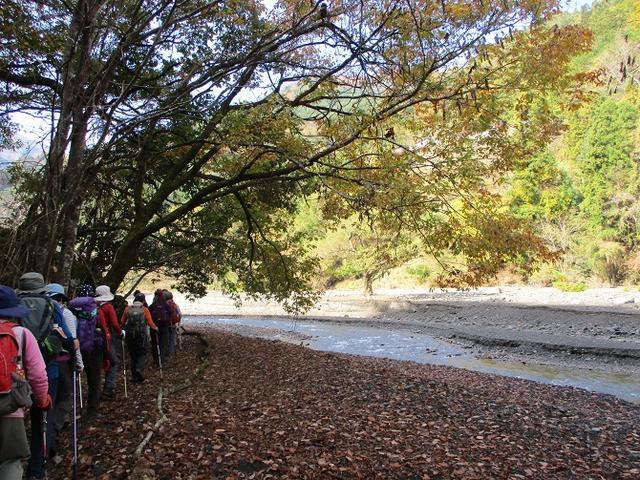 画像4: 11月21日に岡田ガイドのコースで、山梨県富士川町にたたずむ 大柳川渓谷 へ行って来ました♪