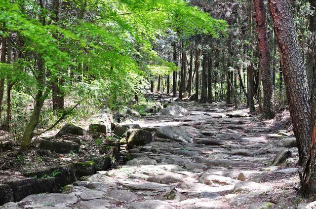 画像: 第27回:琵琶峠の石畳