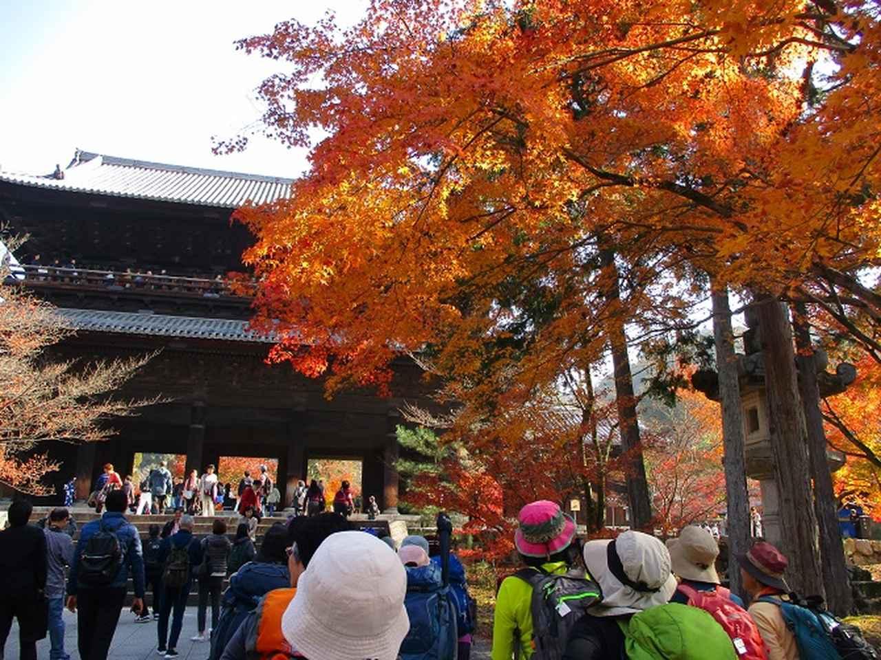 画像1: 11月27日より2泊3日で 山旅会 「京都」 へ行ってきました!