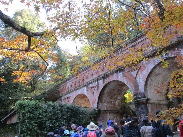 画像3: 11月27日より2泊3日で 山旅会 「京都」 へ行ってきました!