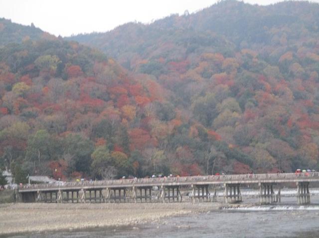 画像12: 11月27日より2泊3日で 山旅会 「京都」 ツアーへ行ってまいりました
