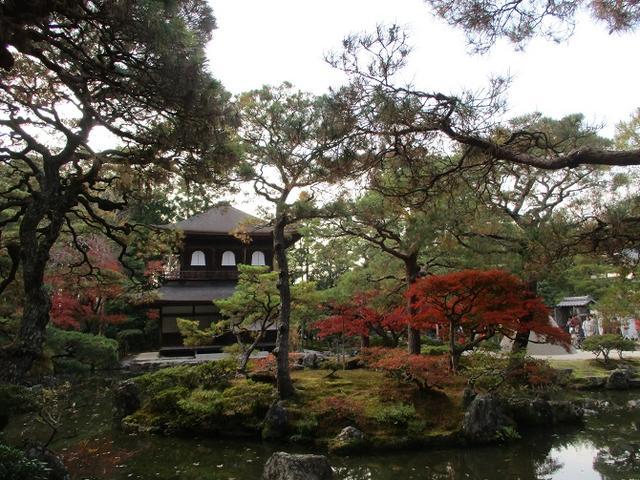 画像4: 11月27日より2泊3日で 山旅会 「京都」 ツアーへ行ってまいりました