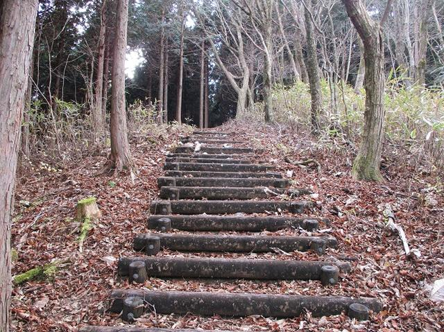 画像3: 12月の山旅会 「思親山」 の直前下見報告です