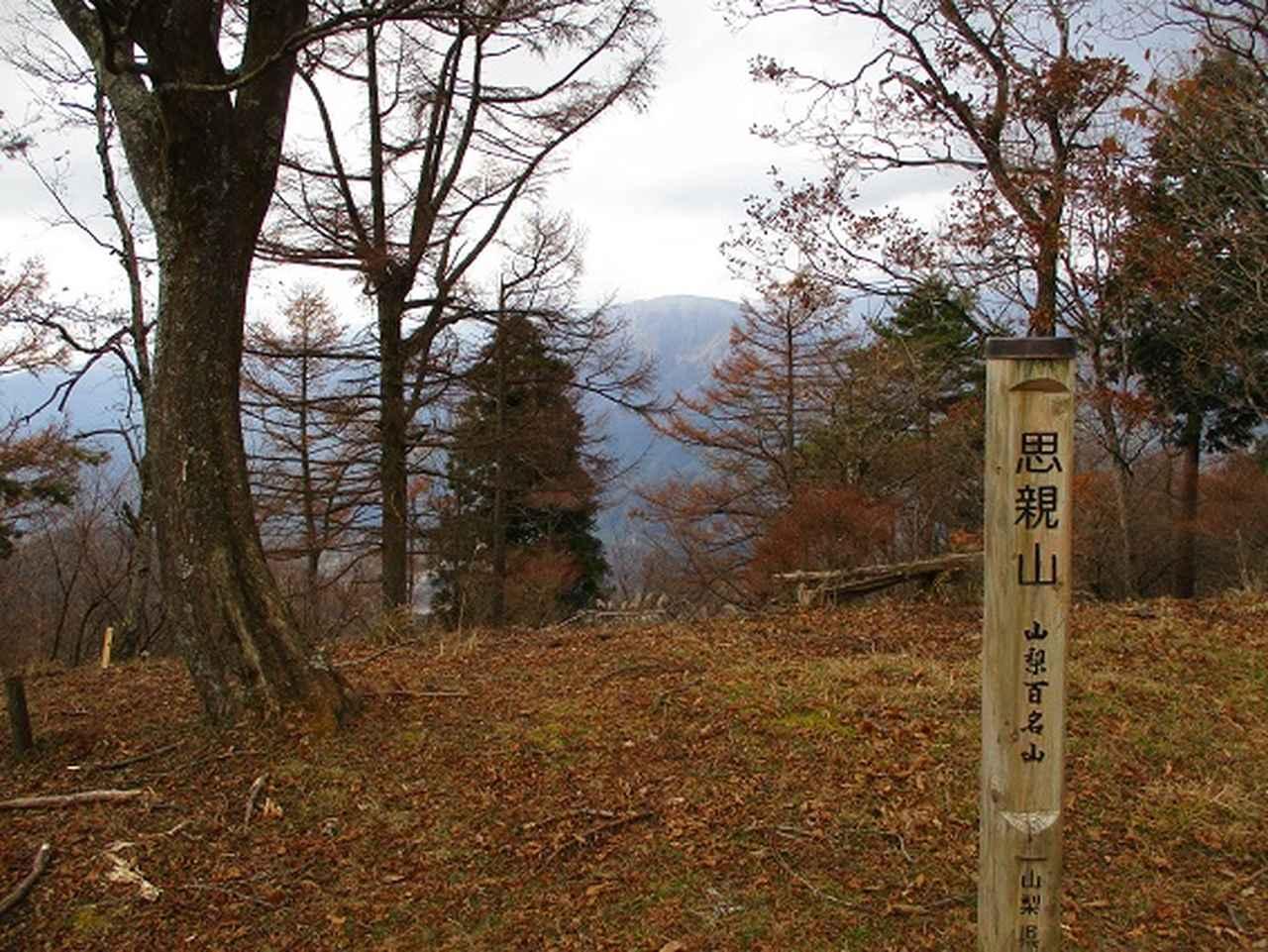 画像5: 12月の山旅会 「思親山」 の直前下見報告です