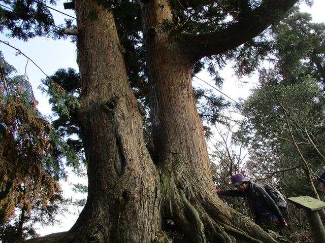 画像5: 先日11月27日より2泊3日で 山旅会 「京都」 ツアーにいってまいりました!
