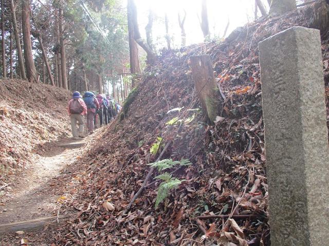 画像4: 先日11月27日より2泊3日で 山旅会 「京都」 ツアーにいってまいりました!
