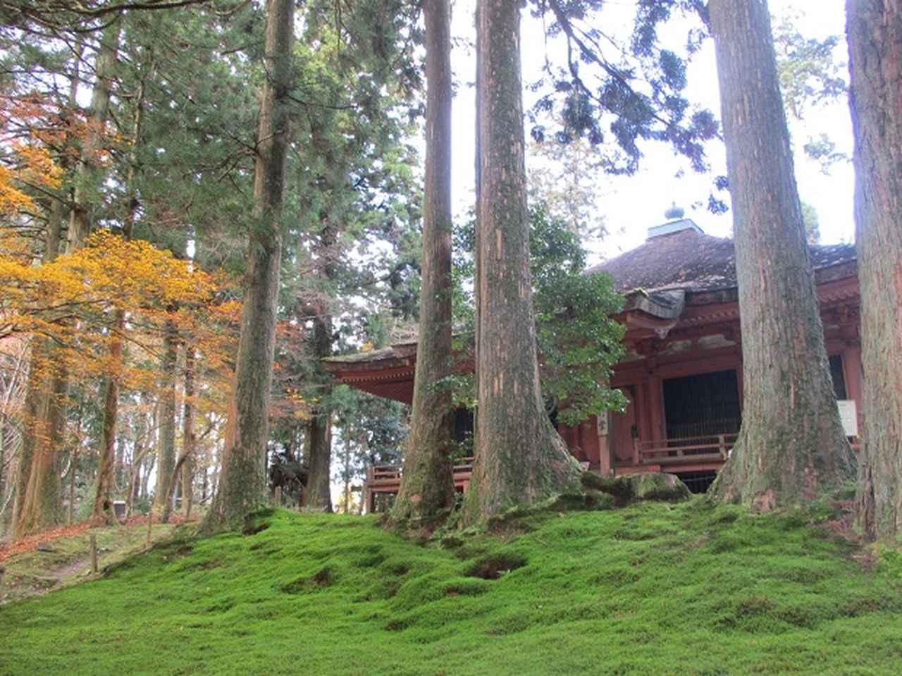 画像8: 先日11月27日より2泊3日で 山旅会 「京都」 ツアーにいってまいりました!