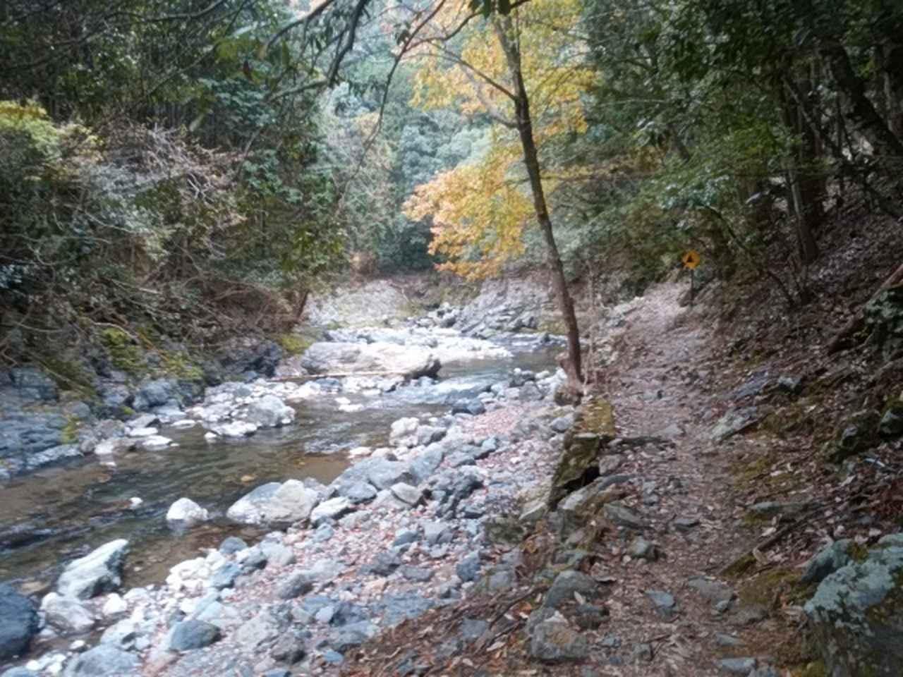 画像8: 11月27日より2泊3日で 山旅会 「京都」 ツアーへ行ってまいりました