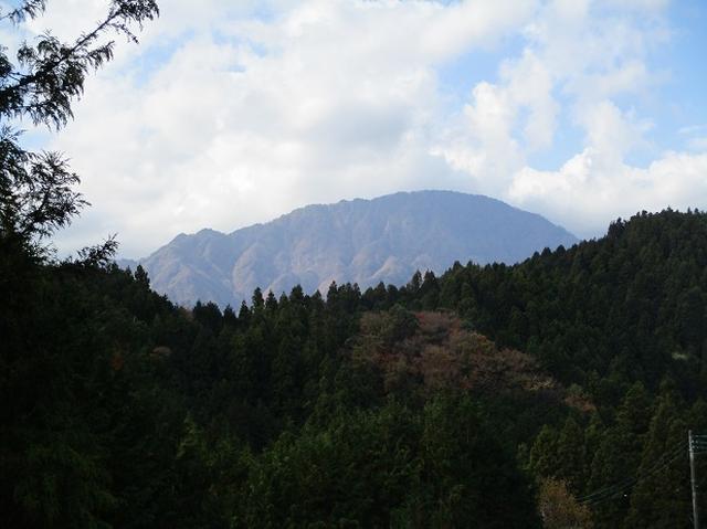 画像10: 12月の山旅会 「思親山」 の直前下見報告です