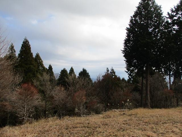 画像6: 12月の山旅会 「思親山」 の直前下見報告です