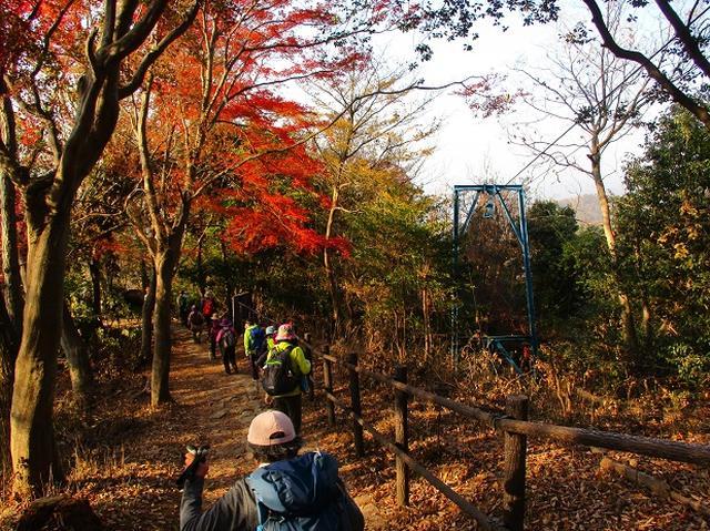 画像3: 11月27日より2泊3日で 山旅会 「京都」 ツアーへ行ってまいりました