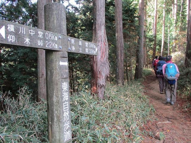 画像3: 先日11月27日より2泊3日で 山旅会 「京都」 ツアーにいってまいりました!