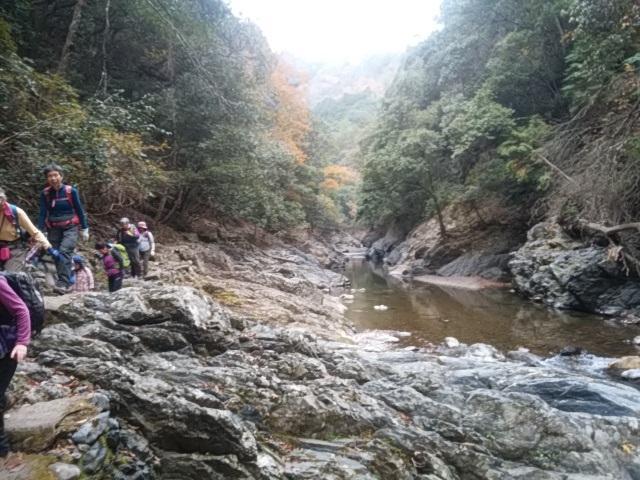画像10: 11月27日より2泊3日で 山旅会 「京都」 ツアーへ行ってまいりました