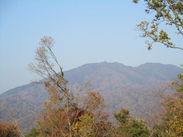 画像2: 11月27日より2泊3日で 山旅会 「京都」 ツアーへ行ってまいりました