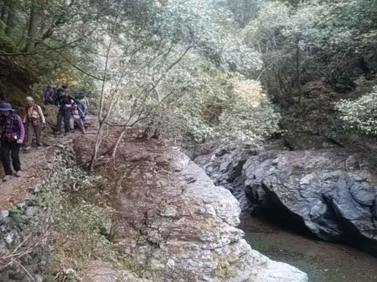 画像9: 11月27日より2泊3日で 山旅会 「京都」 ツアーへ行ってまいりました