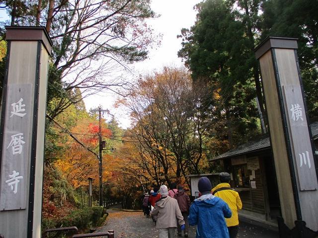 画像1: 先日11月27日より2泊3日で 山旅会 「京都」 ツアーにいってまいりました!
