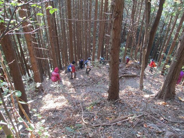 画像8: 岡田健ガイドより、吾野から竹寺ツアーのご報告
