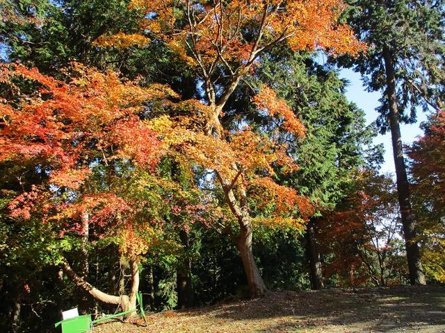 画像4: 岡田健ガイドより、吾野から竹寺ツアーのご報告
