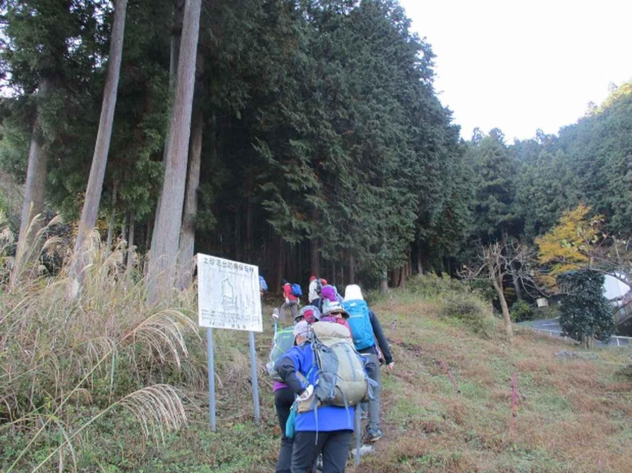 画像1: 岡田健ガイドより、吾野から竹寺ツアーのご報告
