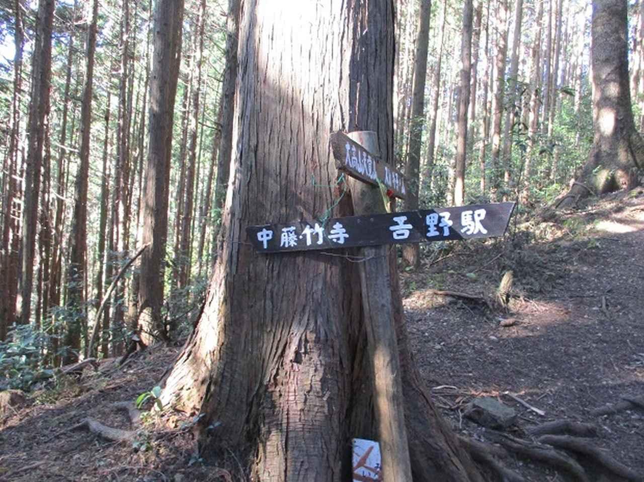 画像2: 岡田健ガイドより、吾野から竹寺ツアーのご報告