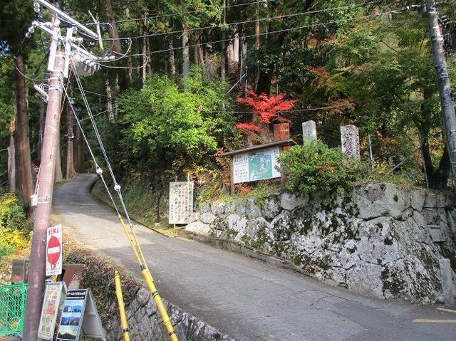 画像2: 岡田健ガイドより、12月の山旅会ツアー直前下見の報告