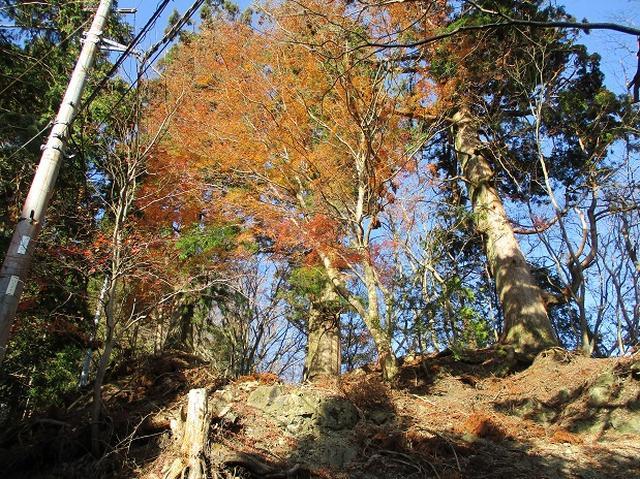画像8: 岡田健ガイドより、12月の山旅会ツアー直前下見の報告