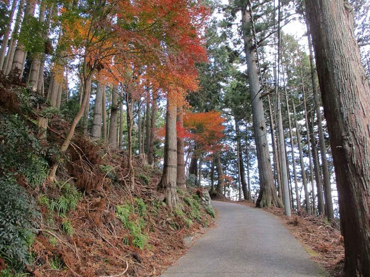 画像5: 岡田健ガイドより、12月の山旅会ツアー直前下見の報告