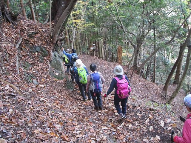 画像7: 岡田健ガイドより、山旅会「大山」ツアーのご報告